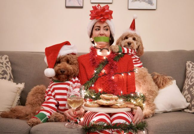 5th Dog of Christmas – @KodyDoodle & @TeddyGramNYC